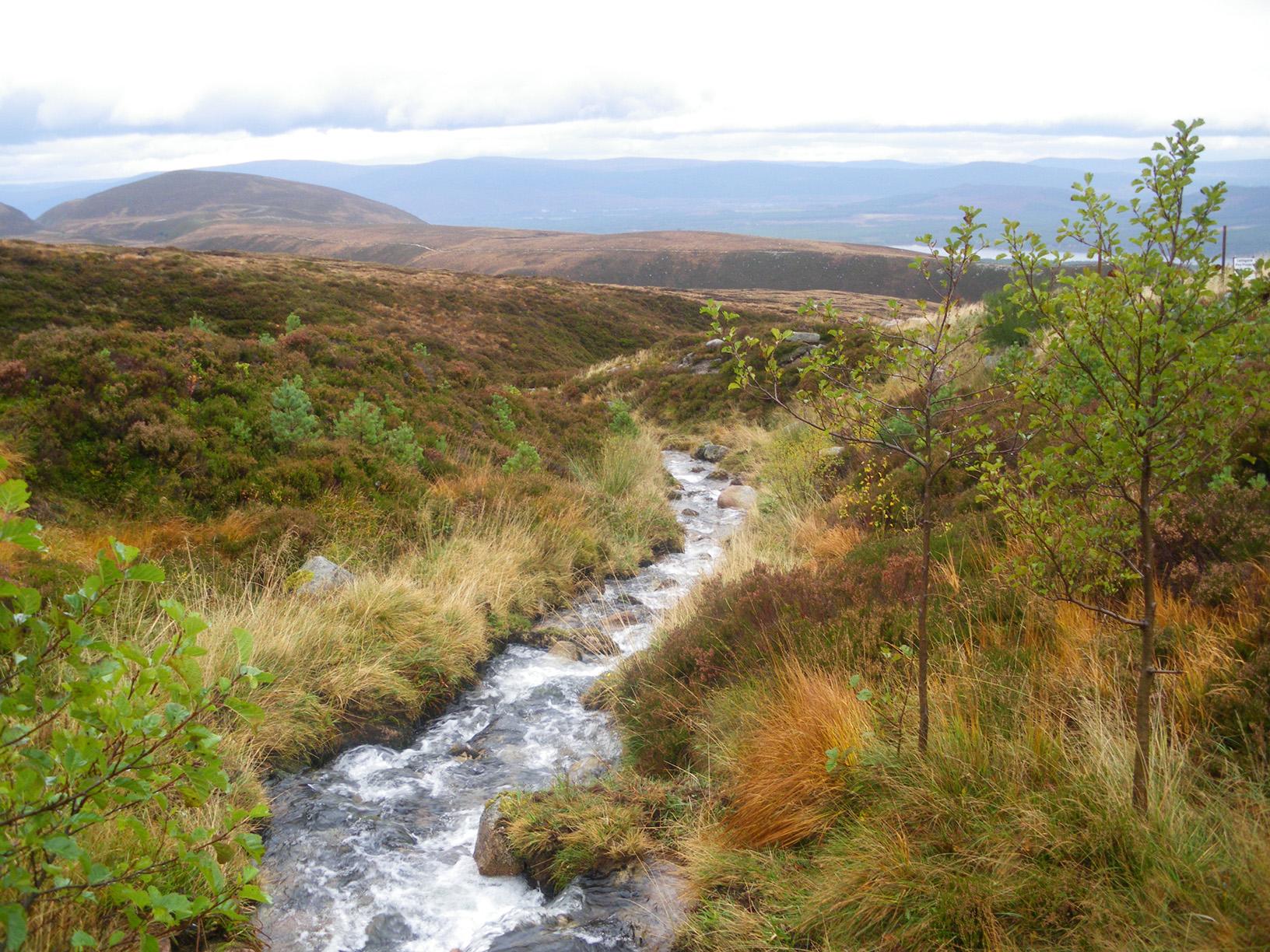 Explore the Cairngorm National Park